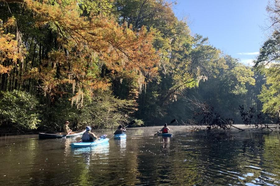 A Leisure Trip Down the Edisto River in the Fall