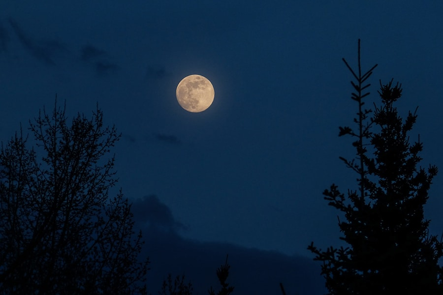 Full Moon Tour on Lake Jocassee