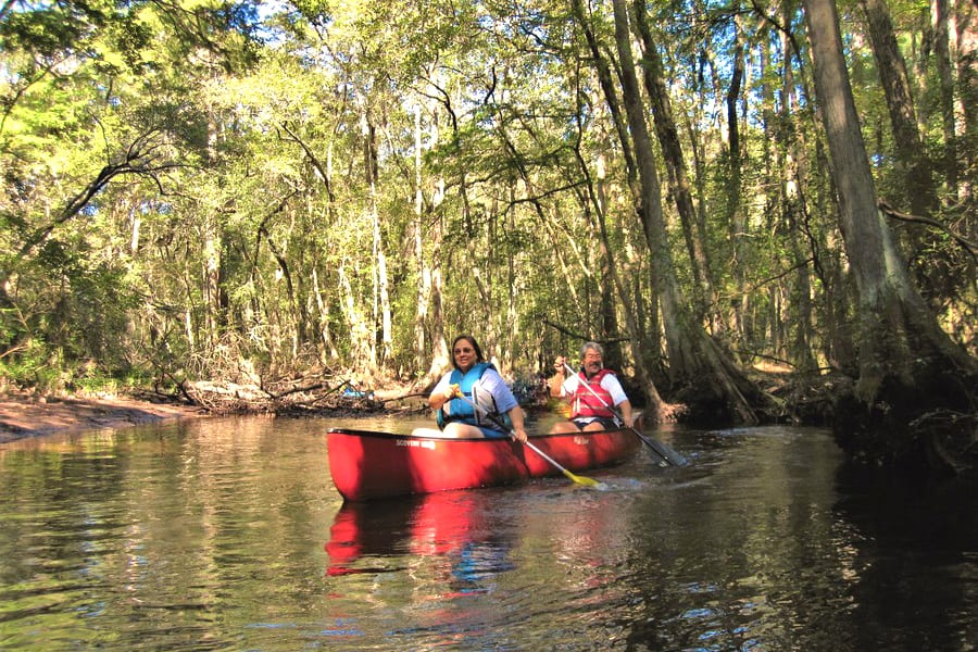 Aiken State Park's Edisto River Provides Opportunities to Kayak and Canoe